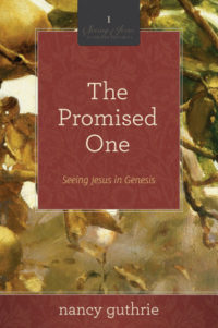 Thursday Women's Study - 6:30pm: The Promised One @ South Church - Board Room